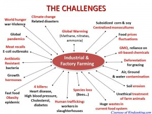Industrial Factory Farming - the Source of All Evils
