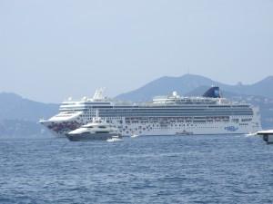 Vegan cruises