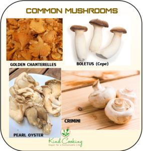 Common mushrooms images