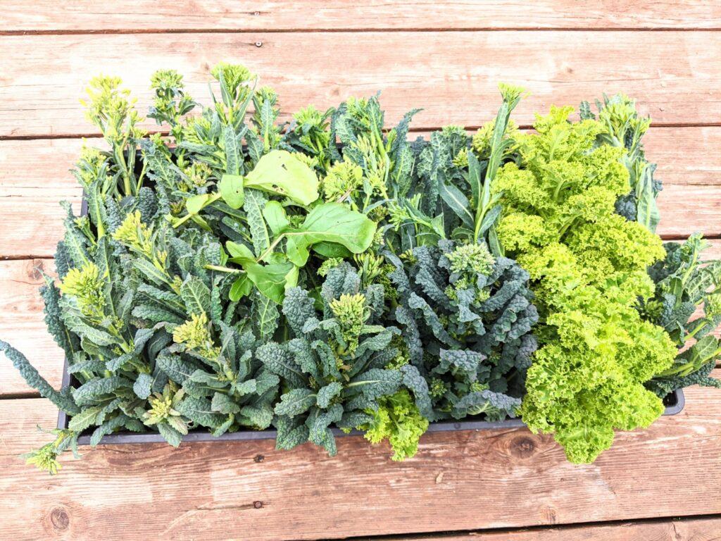 Kale flowerets