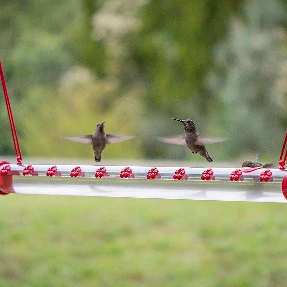Anna-s-Best-Hummingbird-Feeder-with-Hole-Birds-Feeding-Transparent-Pipe-Easy-to-Use-Household-Garden.jpg