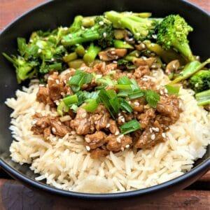Vegan Mongolian beef over rice